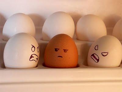 O que fazem os ovos quando você não está olhando