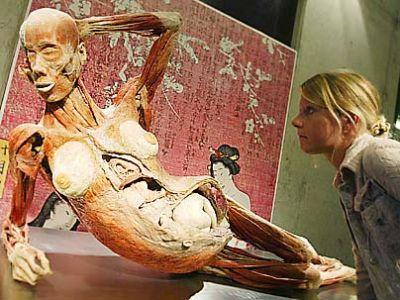 Doutor Morte não poderá exibir cadáveres sexuais