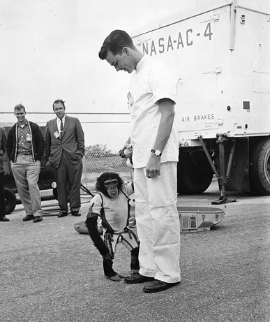 Macacos astronautas