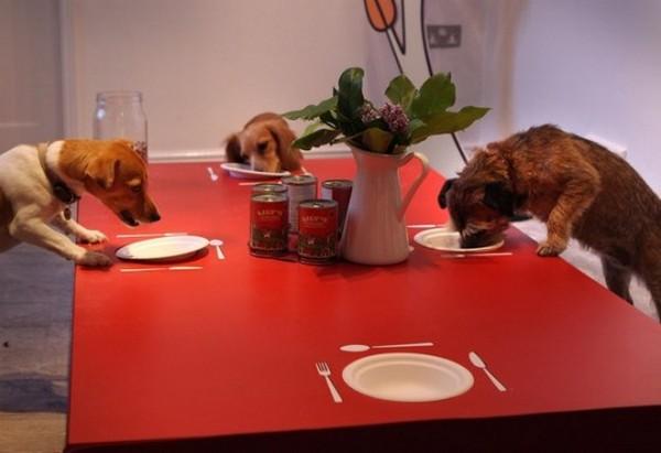 Restaurante para cães em Londres 04