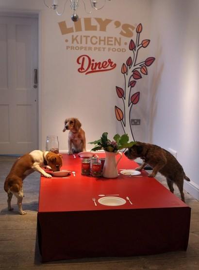 Restaurante para cães em Londres 05