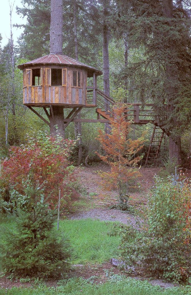 Casa na árvore 09
