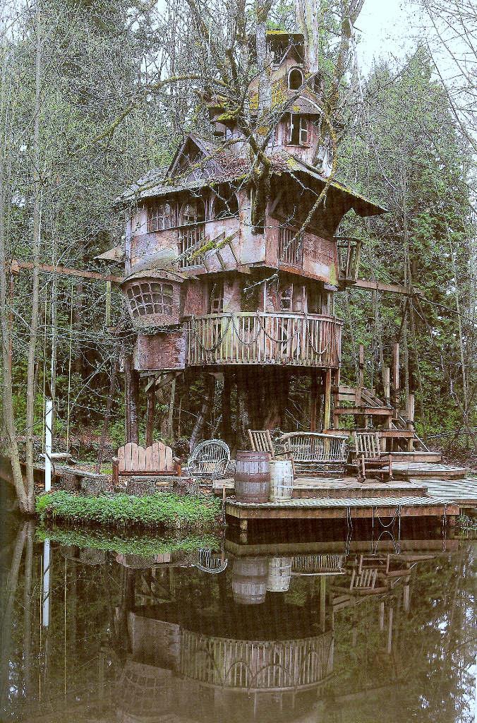 Casa na árvore 10