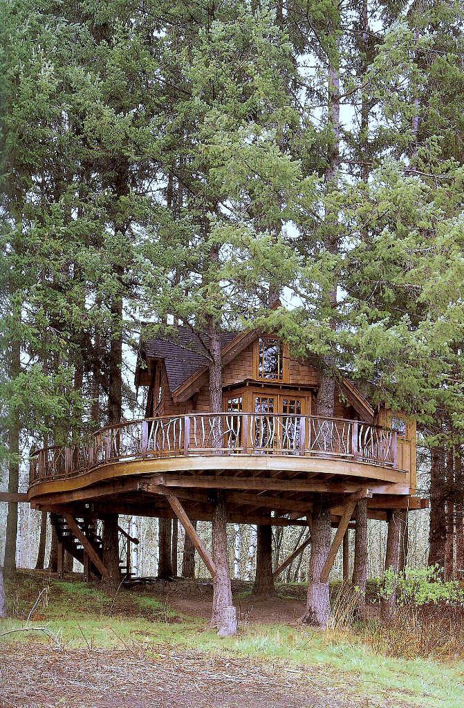 Casa na �rvore 12