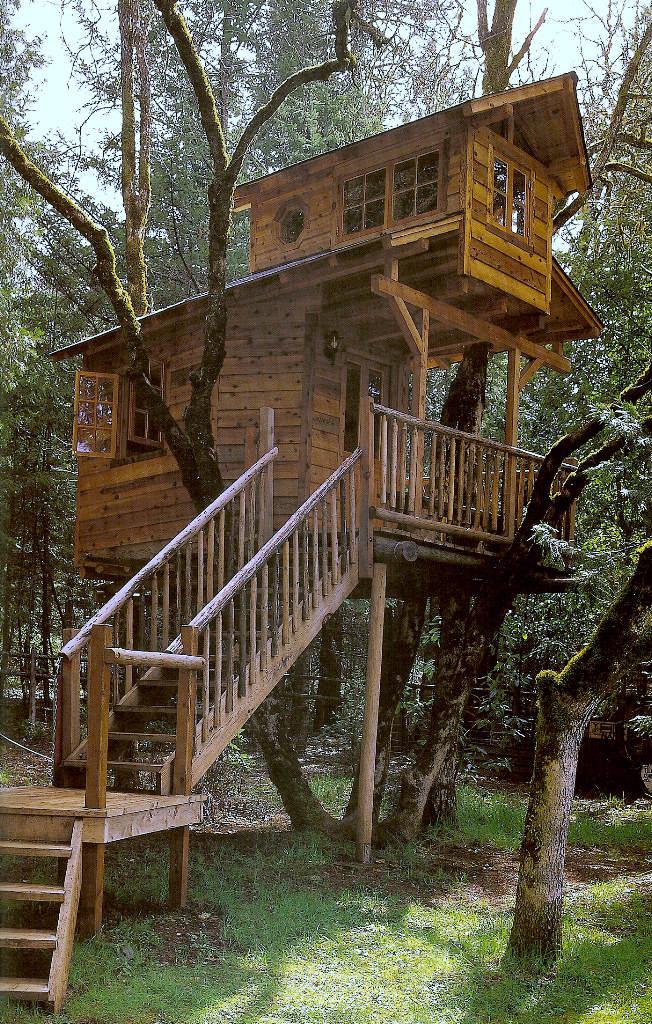 Casa na árvore 13