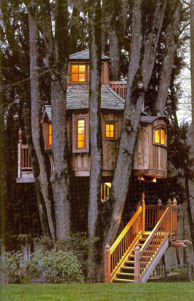 Casa na �rvore 14