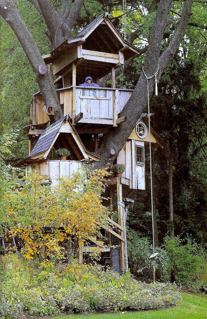Casa na árvore 17