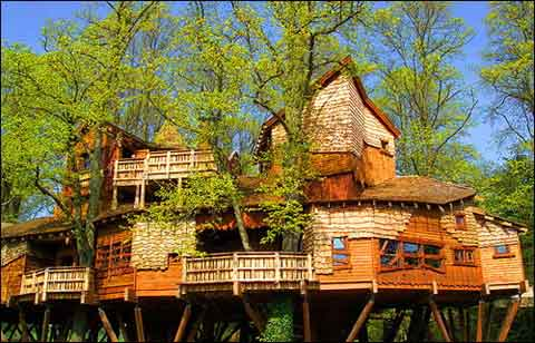 Casa na árvore 27