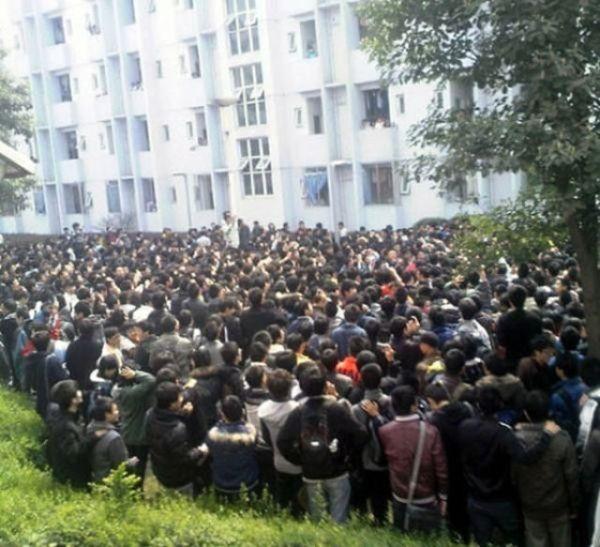 Gatinha Chinesa Popular