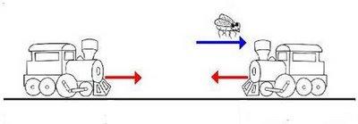Trens e a mosca