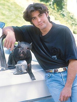 Clooney contratou um vidente para falar com seu porco