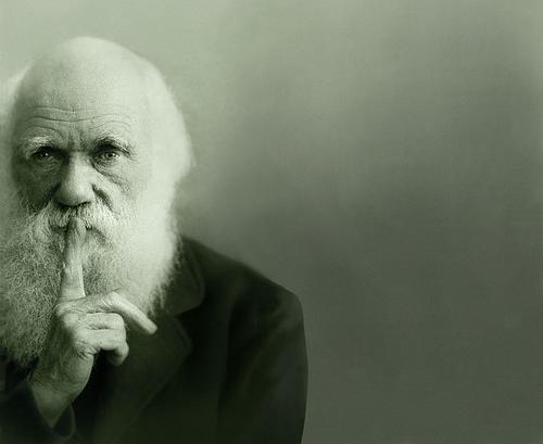Quem é este Darwin?
