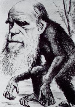 Darwin, um homem a frente de nosso tempo