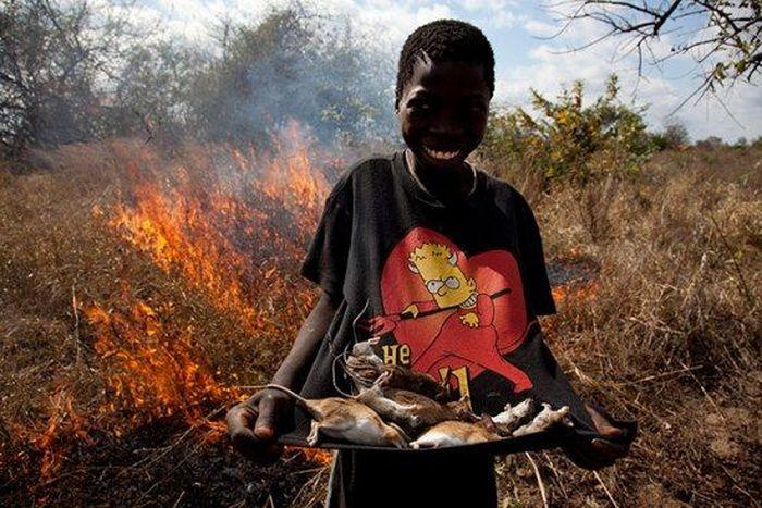 Os caçadores de ratos de moçambique 04
