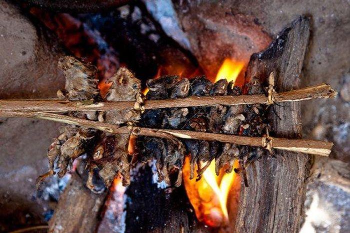 Os caçadores de ratos de moçambique 06