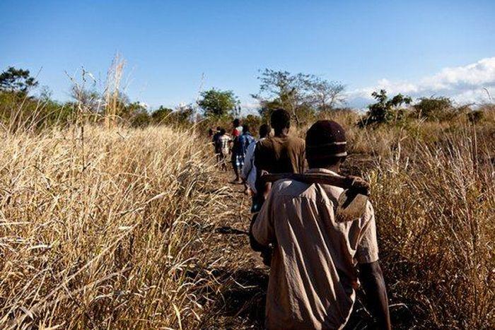 Os caçadores de ratos de moçambique 11