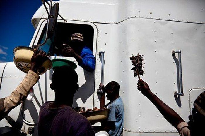 Os caçadores de ratos de moçambique 18