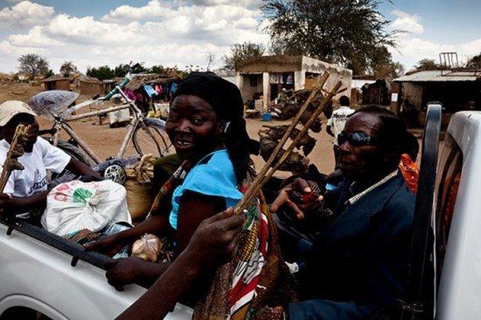 Os caçadores de ratos de moçambique 19