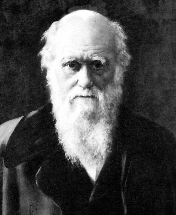 Igreja anglicana se desculpa com Darwin
