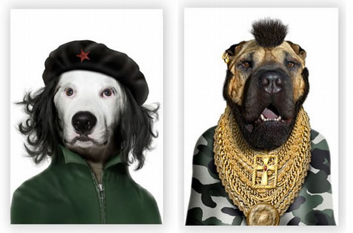 Animais de estimação como personagens famosos