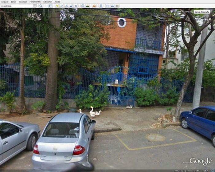 Algumas imagens do Google Stree View no Brasil 14