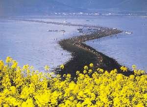 Ilha Jindo 04