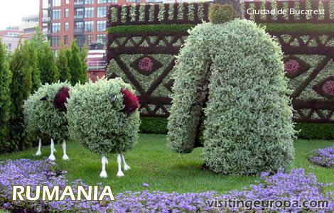 Romênia 40