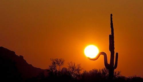 Caçadores do sol 05