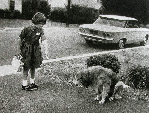 Imagens da semana 68