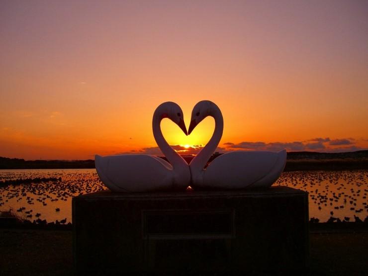 Ah... O amor é lindo.