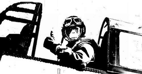 Macacos pilotando caças de combate