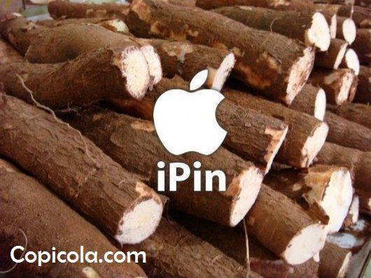 Ipin.jpg