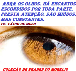 frases_do_moreijo659.png